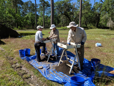 Archaeology Underway at Negro Fort (Fort Gadsden)