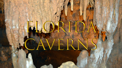 Florida Caverns State Park is open!